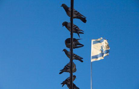 לימוד ליום העצמאות- התפילה לשלום המדינה- יואל רפל | 19.03.18 |