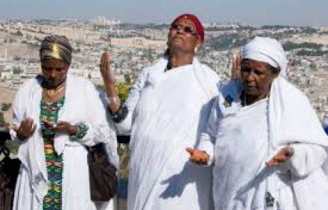 מאמץ אחרון לפני ירושלים- מערך לימוד