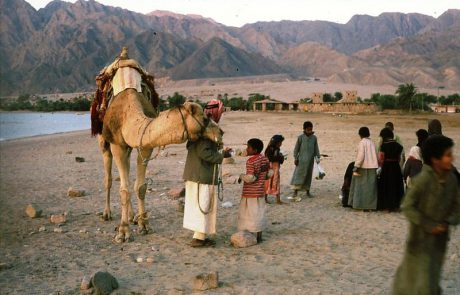 בביתם במדבר- הבדואים בנגב